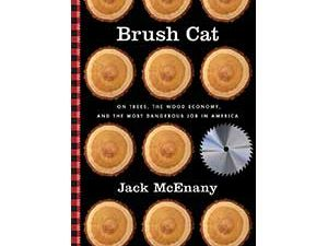 books-brush-cat-300x250.jpg
