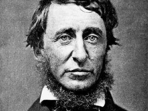 Henry D. Thoreau Biography