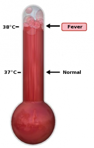 342px-Thermometer_Fever.svg.png