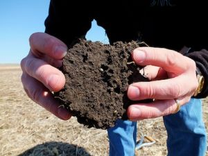 Are We Heading Toward Peak Fertilizer? thumbnail
