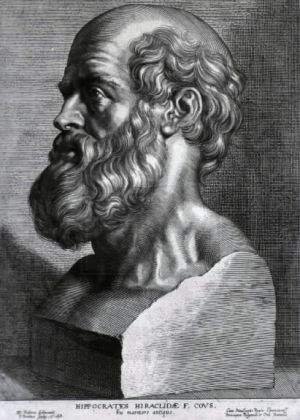 Hippocrates_rubens.jpg