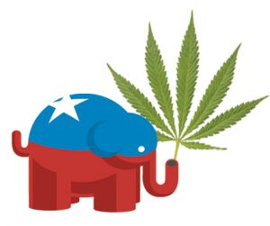 Republicans and marijuana