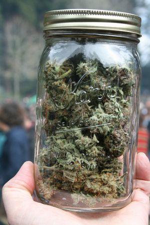 Mason Jar Full of Cannabis