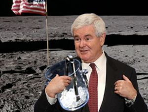 newt gingrich ice bucket