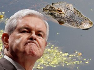 Newt Gingrich's Florida Fail