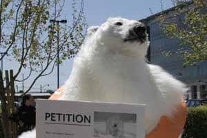 polar-bear-petition.jpg