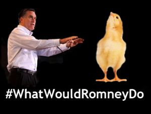 Romney chicken