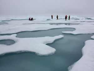 sea ice