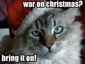 war on christmas cat